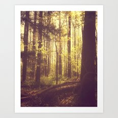 She Experienced Heaven on Earth Among the Trees Art Print