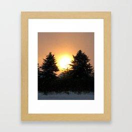 Sunset Over Pines Framed Art Print