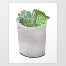 Cactus Plant II Art Print