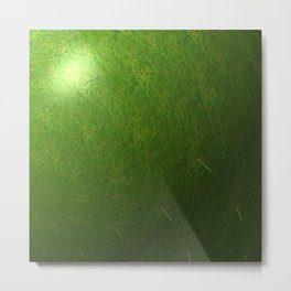 grass sphere Metal Print