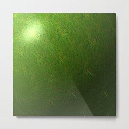 grass sphere Metal Print