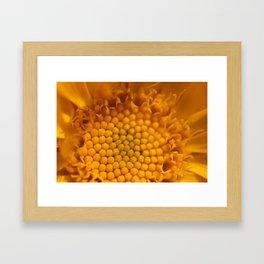 Flower's Heart 153 Framed Art Print