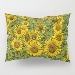 SUNFLOWERS 3 Pillow Sham