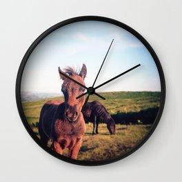 Dartmoor Pony Portrait (2) Wall Clock