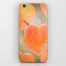 Fading Hearts iPhone & iPod Skin