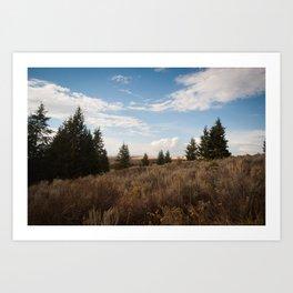Moody, Idaho Art Print
