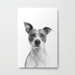 Cute Puppy Dog Portrait Art Print, Best Friend, Doggy Animal Nursery, Pet Animal Printable Poster Metal Print