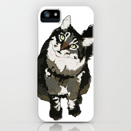 Cat Yellow Eyes iPhone Case