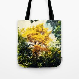fall in Central Park Tote Bag