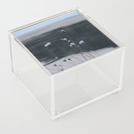 Snow-Covered Buds Acrylic Box