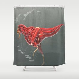 Carnotaurus Muscle Study Shower Curtain