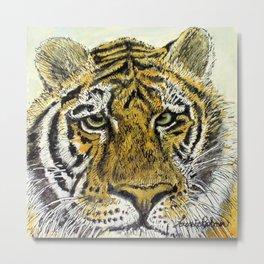 Green Eyed Tiger Animal Art Metal Print