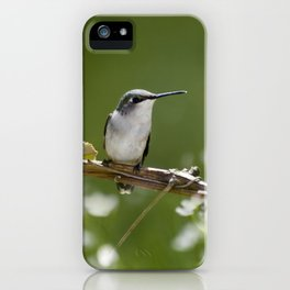 Meadow Hummingbird Art iPhone Case