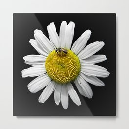 Bee Loves Bee Loves Bee Not. Metal Print