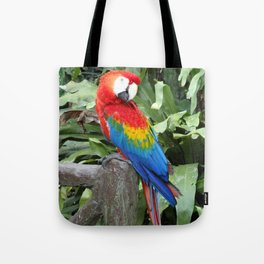 Parrot posing in Malaysia Tote Bag
