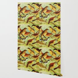 Amazonian birds by Göldi & Emil August, 1859-1917 Belem Brazil Colorful Tropical Birds Wallpaper