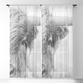 Highland cow greyscale close up  Sheer Curtain