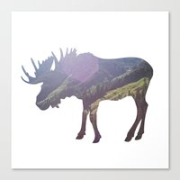 moose Canvas Prints featuring Moose by Luke Gram