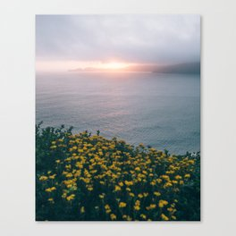 Shining Earth Canvas Print