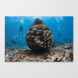 Dropped a bomb on me Canvas Print