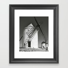 Don Quixote Framed Art Print
