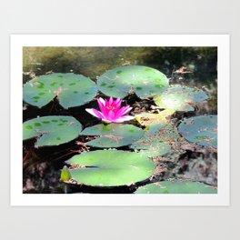 Beijing Imperial garden | Jardin Impérial Art Print