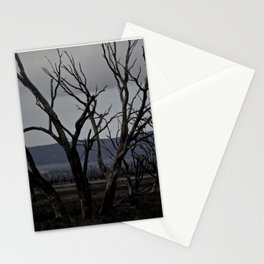 Drought Stationery Cards