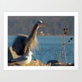 Happy Heron Art Print