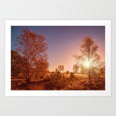 Wisley Common Alone Surrey Art Print