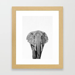Elephant, Safari Animal, African Animal, Animal Photo, Wild Animal Framed Art Print