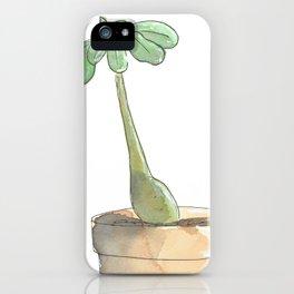 Adenium Obesum 2 iPhone Case