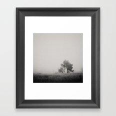 the fog ...  Framed Art Print