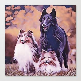 Shetland Collies and Belgian Shepherd Canvas Print