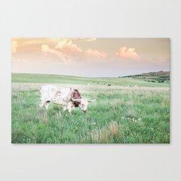 Oklahoma Longhorn Canvas Print