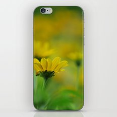 Blurs of Summer iPhone & iPod Skin