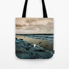 Barnegat Light 3 (seagull) Tote Bag