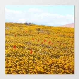Yellow Ochre Canvas Print
