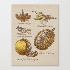 Steampunk Fruit  Canvas Print