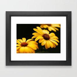 Your Yellow Flowers Framed Art Print
