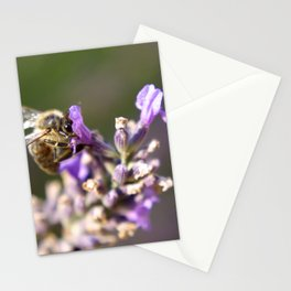 Bee on a lavender stem Stationery Cards