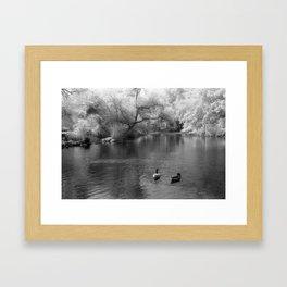 On The Lake Framed Art Print