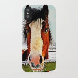 Snowy Whiskers iPhone Case