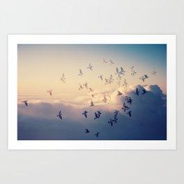 Flying Art Print
