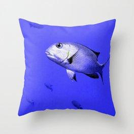 Bigeye Emperor - Monotaxis Grandoculis Throw Pillow