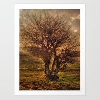 The tree of wishes Art Print