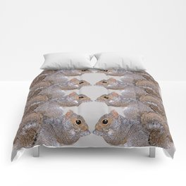 Squirrel Whispers Comforters