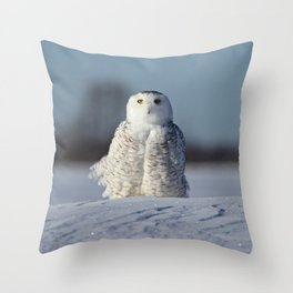 Miss Snowy Owl Throw Pillow