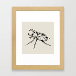 Rhinoceros Beetle Framed Art Print