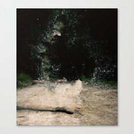 R.Signer Canvas Print