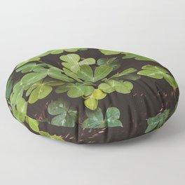 Redwood Sorrel - Nature Photography Floor Pillow